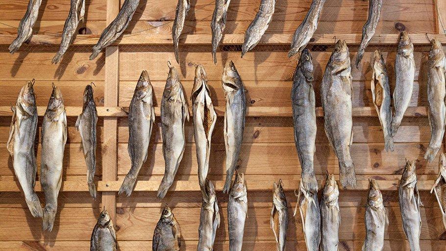 Хранение рыбы в условиях достаточно низкой температуры 3.