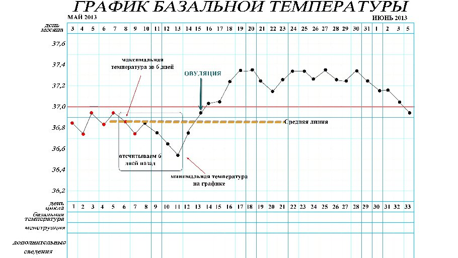 Как измерить базальную температуру правильно